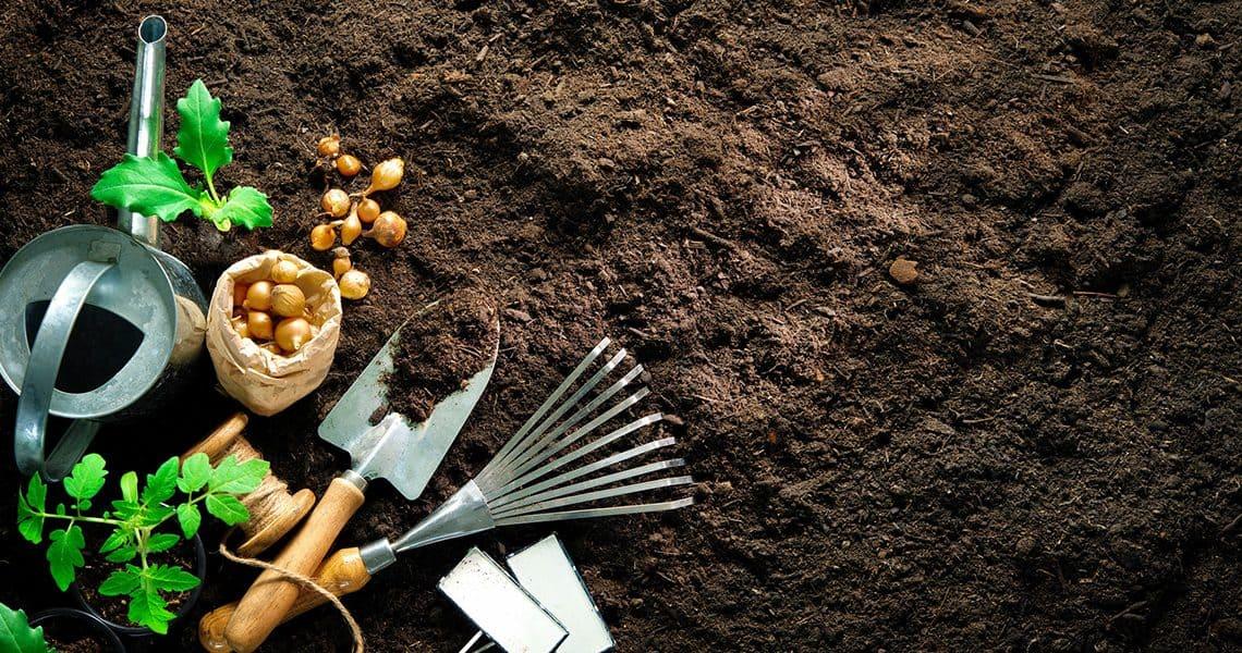 Quels sont les meilleurs outils indispensables aux jardiniers ?