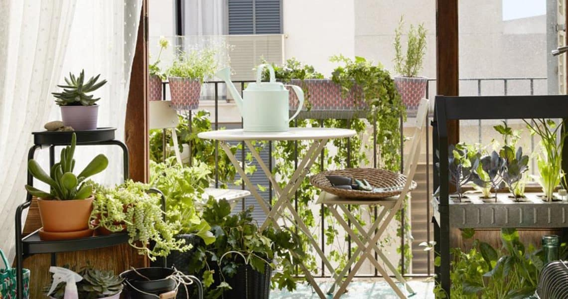 7 conseils pour bien jardiner sur son balcon