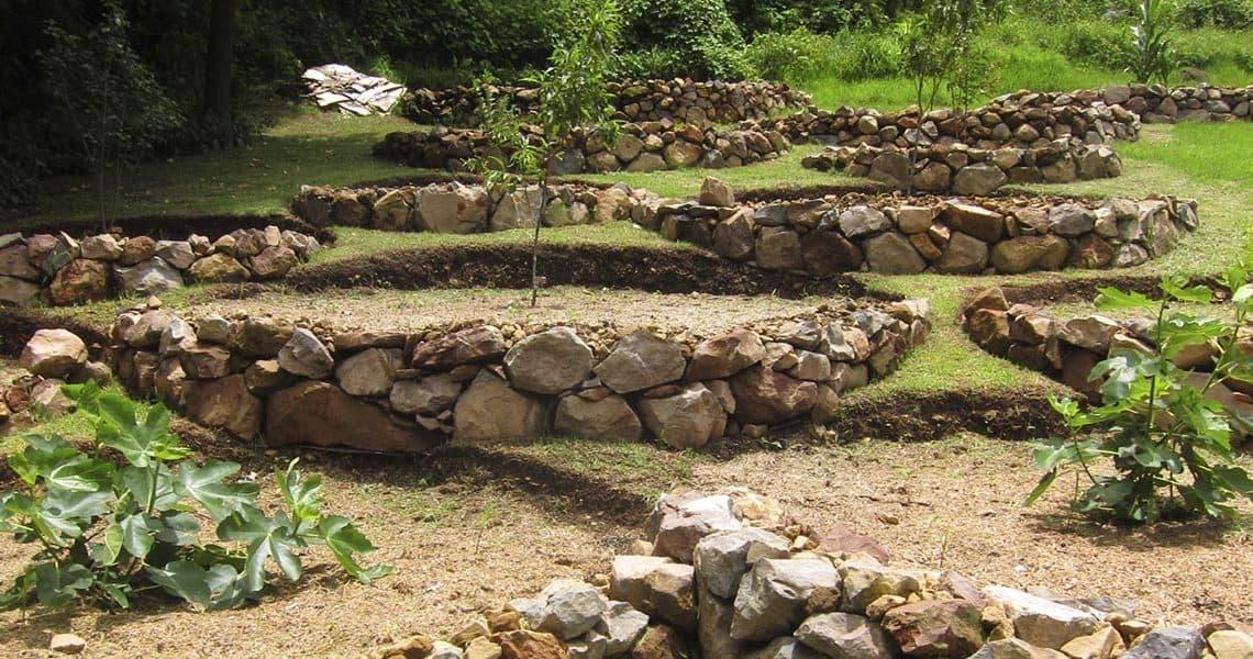 Permaculture : comment jardiner avec la permaculture ?
