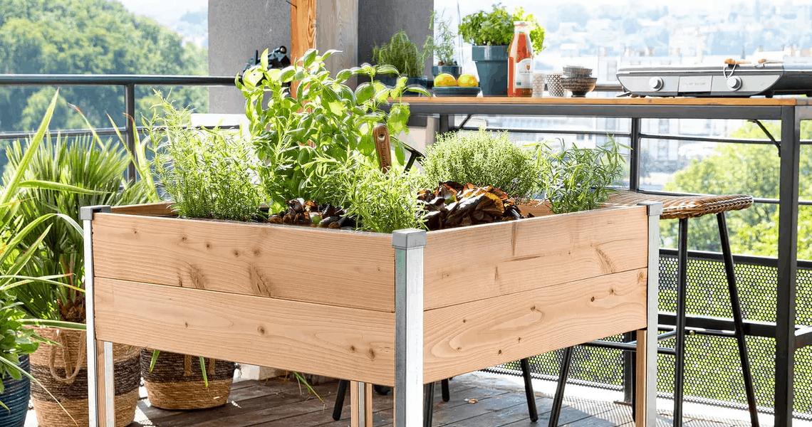 Jardin en appartement : comment bien gérer son potager en appart ?