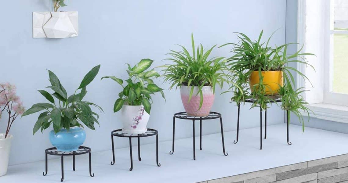 Pot de fleur : 5 pots pour tous les goûts