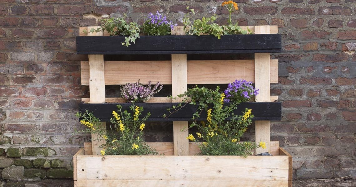 Comment organiser sa jardinière en palette ?